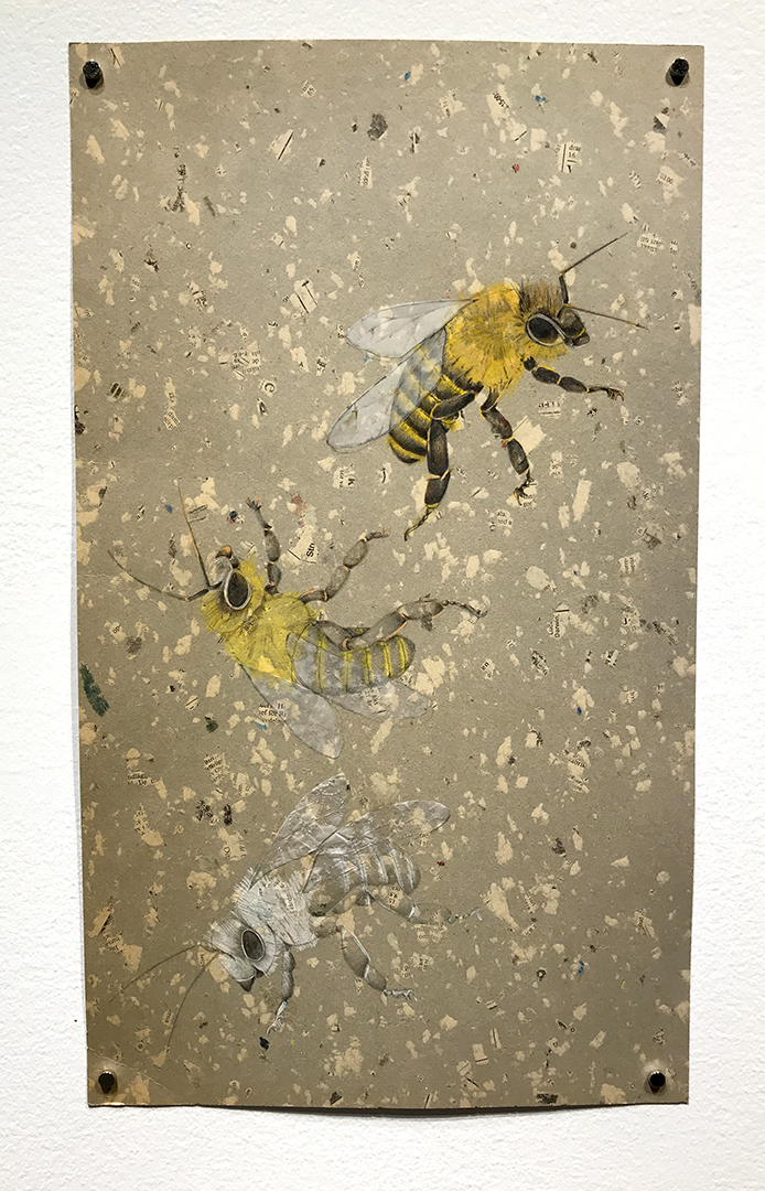 illustration representing the decline of honey bee populations