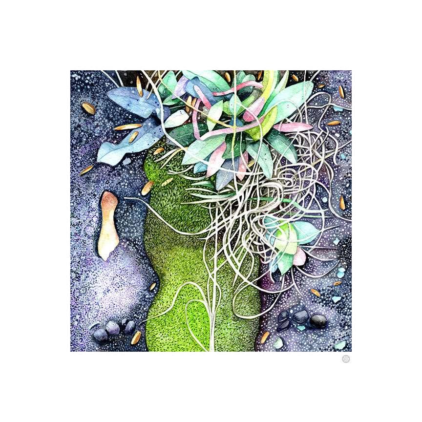 watercolor-tiny-universes-moss-northshore